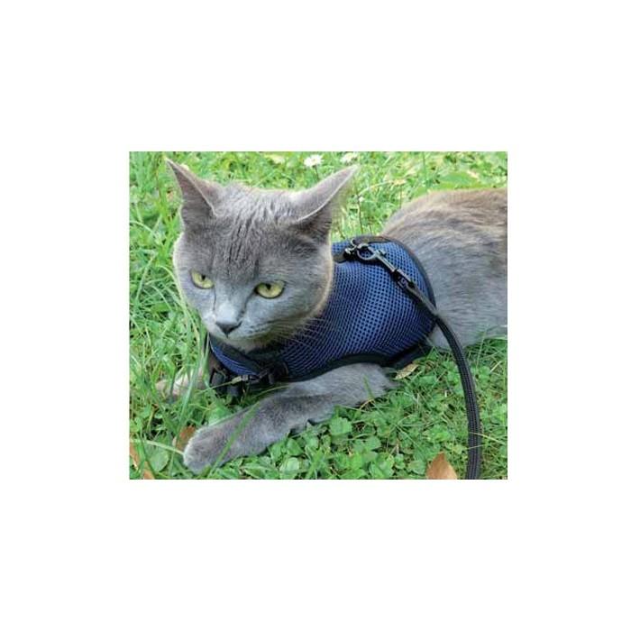 Collier, laisse et harnais - Parrure laisse et harnais Jogging pour chats