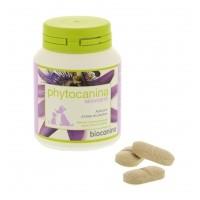 Comportement éducation - Phytocanina nervosité