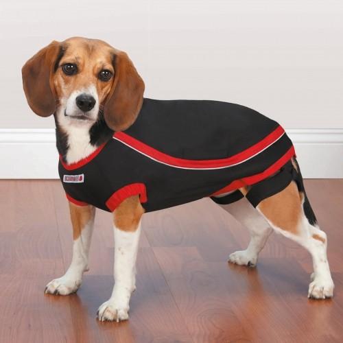 Comportement éducation - T-shirt anti-anxiété pour chiens