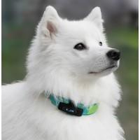 Comportement éducation - Capteur d'activité Motion Pet Activity Tracker