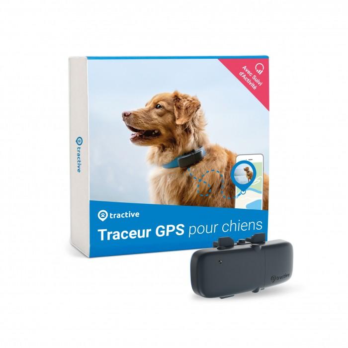 Comportement éducation - Traceur GPS pour chien pour chiens