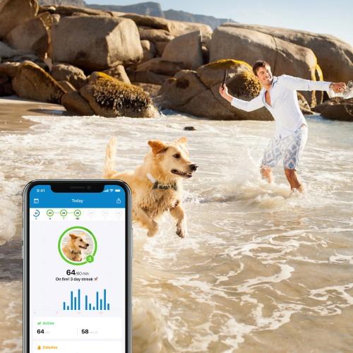 Sécurité et protection - Traceur GPS 4 pour chien pour chiens
