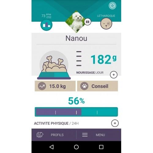 Comportement éducation - Tracker d'activité Canhe-Fit Light pour chats