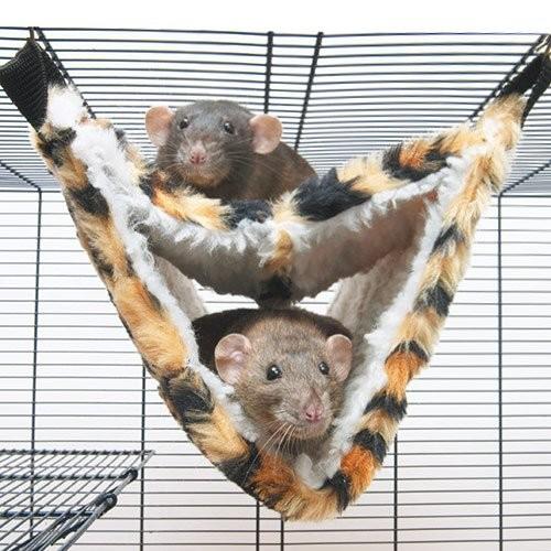 Couchage et habitat rongeur - Hamac Relax de Luxe Fake Fur pour rongeurs