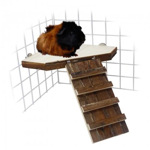 Couchage et habitat rongeur - Plateforme et rampe en bois pour rongeurs