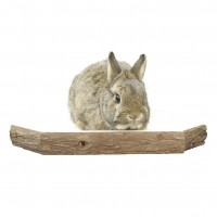 Couchage et habitat rongeur - Plateforme en bois