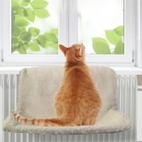Hamac / lit de radiateur pour chat - Hamac Good Sleep Camon