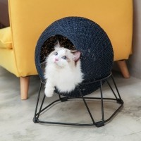 Couchage pour chat - Couchage Boule Ibiyaya