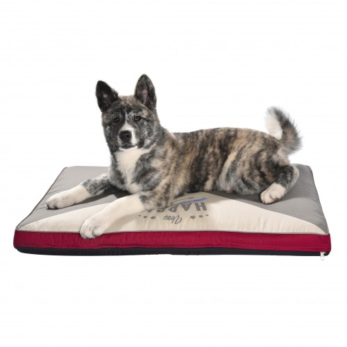 matelas letter matelas pour chien bobby wanimo. Black Bedroom Furniture Sets. Home Design Ideas