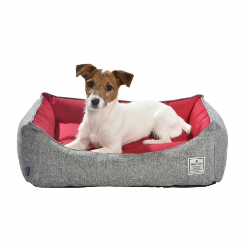 Couchage pour chien - Corbeille School pour chiens