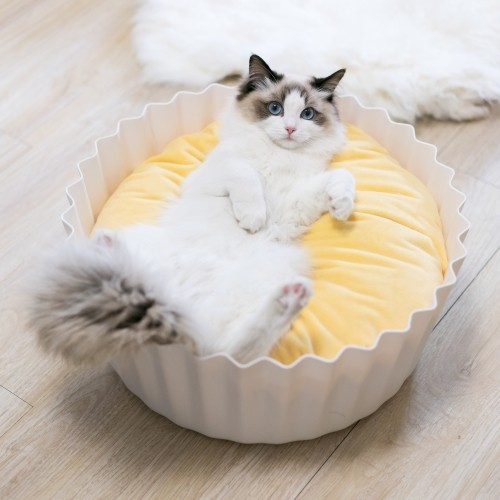Couchage pour chat - Panier Cupcake pour chats