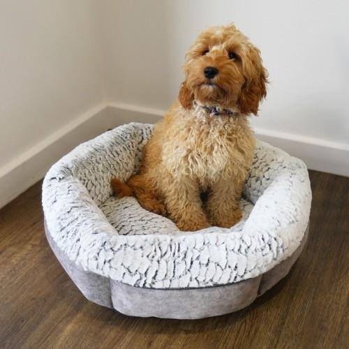 Couchage pour chien - Corbeille Plush pour chiens