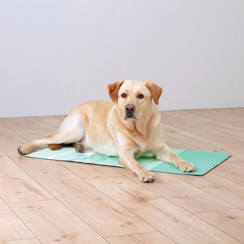 Couchage pour chien - Tapis rafraîchissant Tropic pour chiens