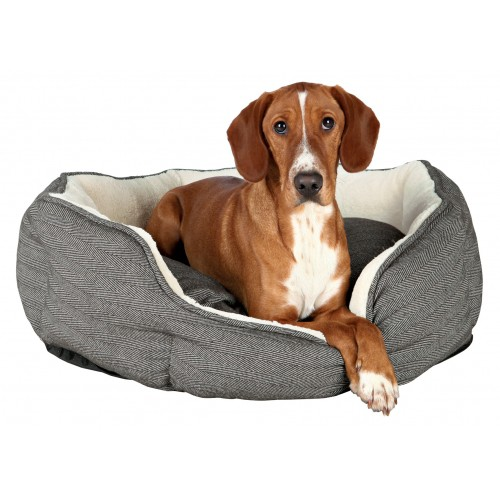 Couchage pour chien - Corbeille Joel pour chiens