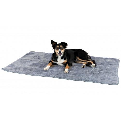Couchage pour chien - Tapis Cosy pour chiens