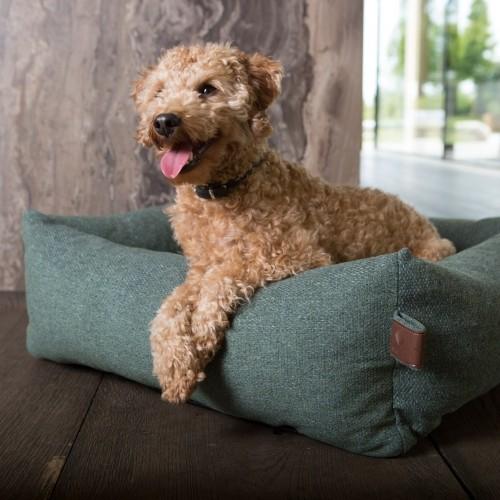 Couchage pour chien - Panier Orthopédique anti-tâche Snug pour chiens