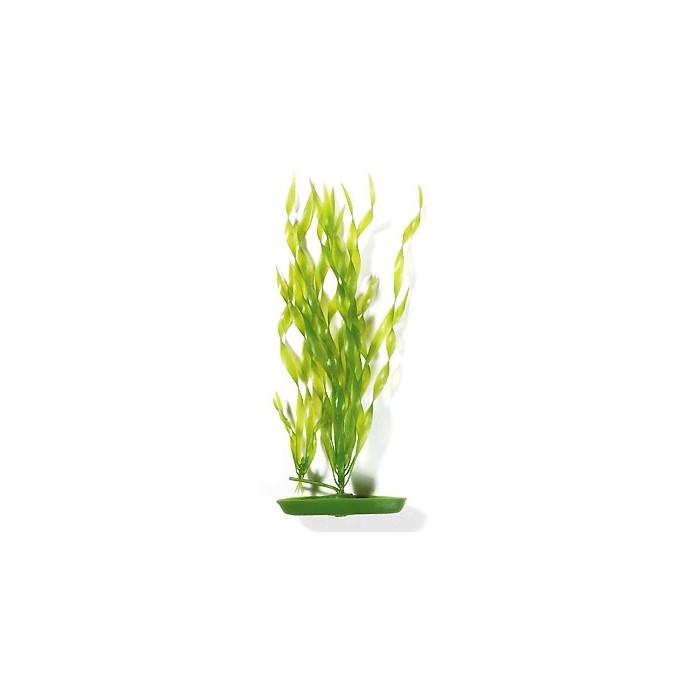 Plante artificielle vallisn ria d coration pour aquarium for Plante pour aquarium