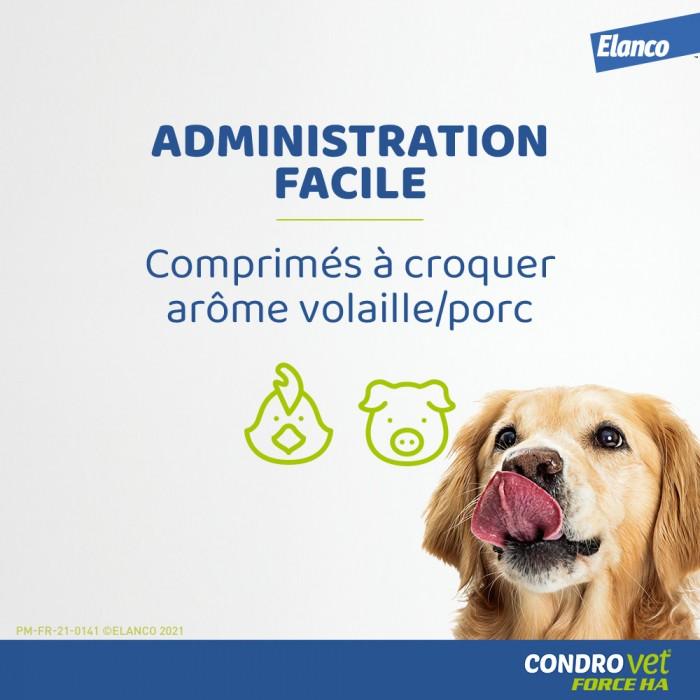 Friandise & complément - Condrovet Chien pour chiens