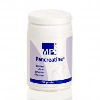 Complément digestion pour chiens et chats - Pancreatine MP Labo