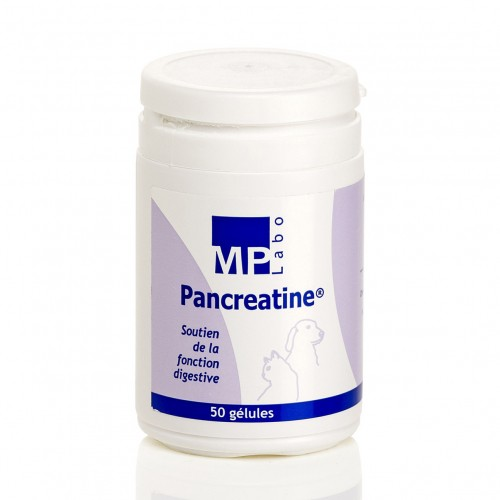 Friandise & complément - Pancreatine pour chiens