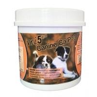 Complément minéral et vitaminé - Canine Ca:P=3 Vit'i5