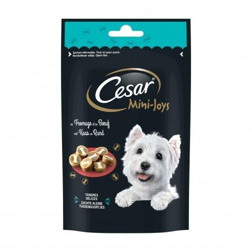 Friandise & complément - César pour chiens