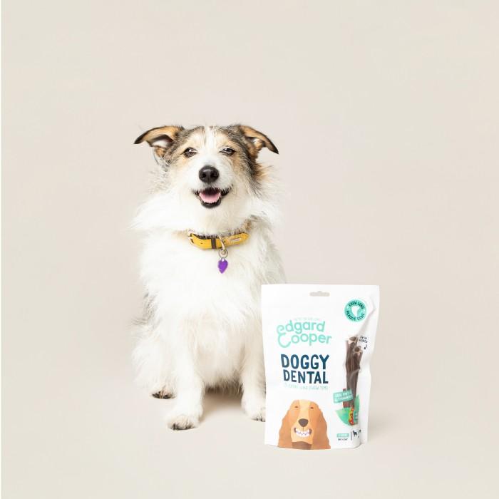Friandise & complément - Friandises MACH'STICKS Dental - Fraise/Menthe pour chiens