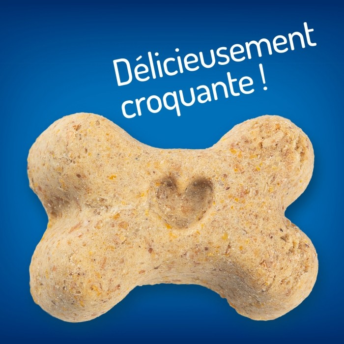 Friandise & complément - Healthy Weight Treats pour chiens