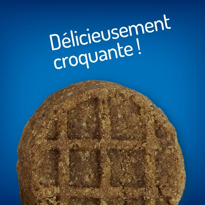 Friandise & complément - Soft Baked Biscuits pour chiens