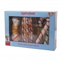Friandises pour chien - Boîte à friandises de Noël Rosewood