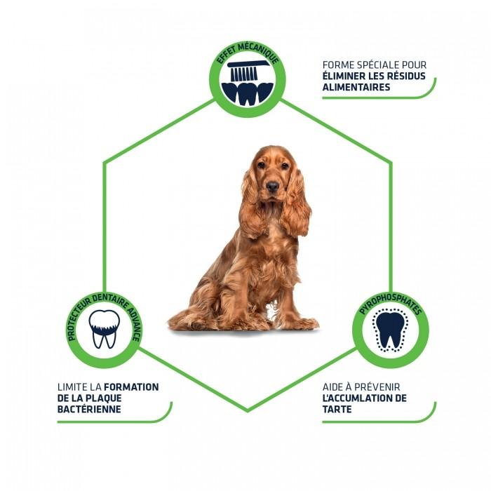 Hygiène dentaire, soin du chien - Dental Care Stick pour chiens