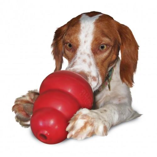 Friandise & complément - Pâte appétente Stuff'n KONG pour chiens