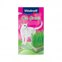 Herbe à chat dépurative à faire pousser - Herbe à chat Cat-Gras Vitakraft