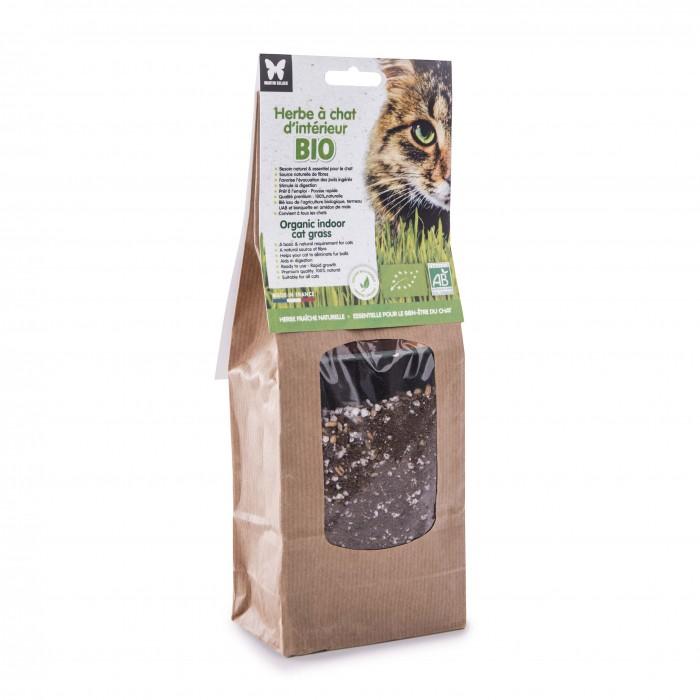 Friandise & complément - Herbe à chat d'intérieur à semer BIO pour chats