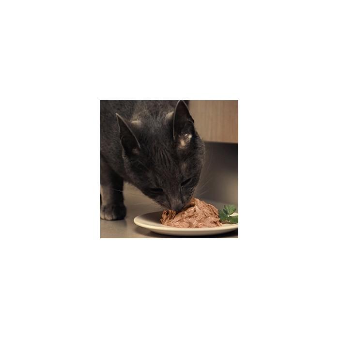 Friandise & complément - Les Dômes pour chats