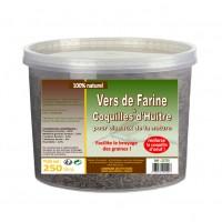 Complément pour poules et poussins - Vers de farine et coquilles d'huitres Lifland