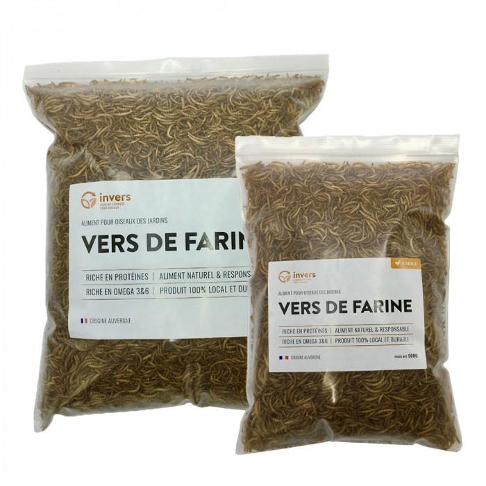 Vers de farine déshydratés