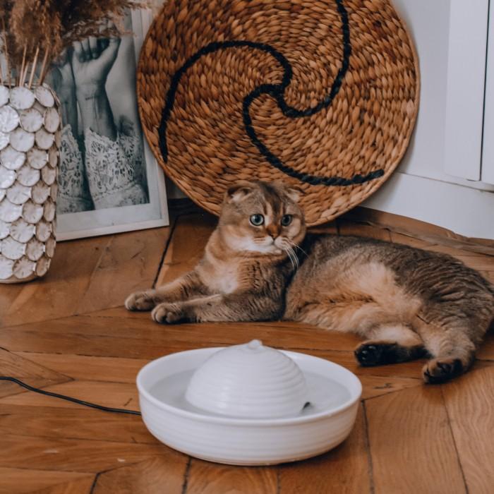 Gamelle, distributeur & fontaine - Fontaine d'eau Vital Flow pour chats