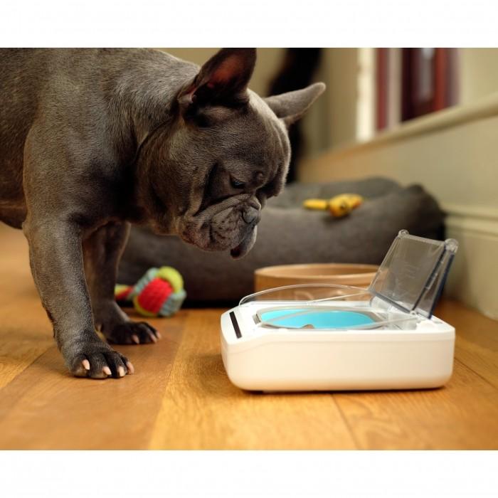 Gamelle, distributeur & fontaine - Gamelle hermétique pour chats
