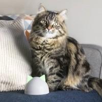 Accessoire connecté pour chatière et distributeur - Hub pour de connexion Sureflap