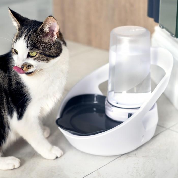 Gamelle, distributeur & fontaine - Distributeur d'eau connecté Felaqua pour chats