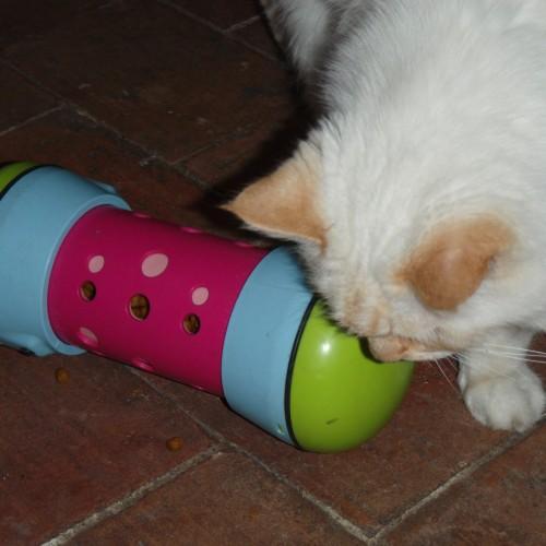 Gamelle, distributeur & fontaine - Jout distributeur anti-anxiété Pipolino pour chat pour chats