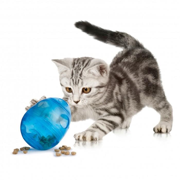 Jouet pour chat - Distributeur Egg Cersizer Funkitty pour chats