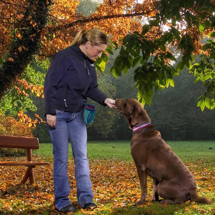 Gamelle et distributeur - Sac à friandises Go Stuff It pour chiens