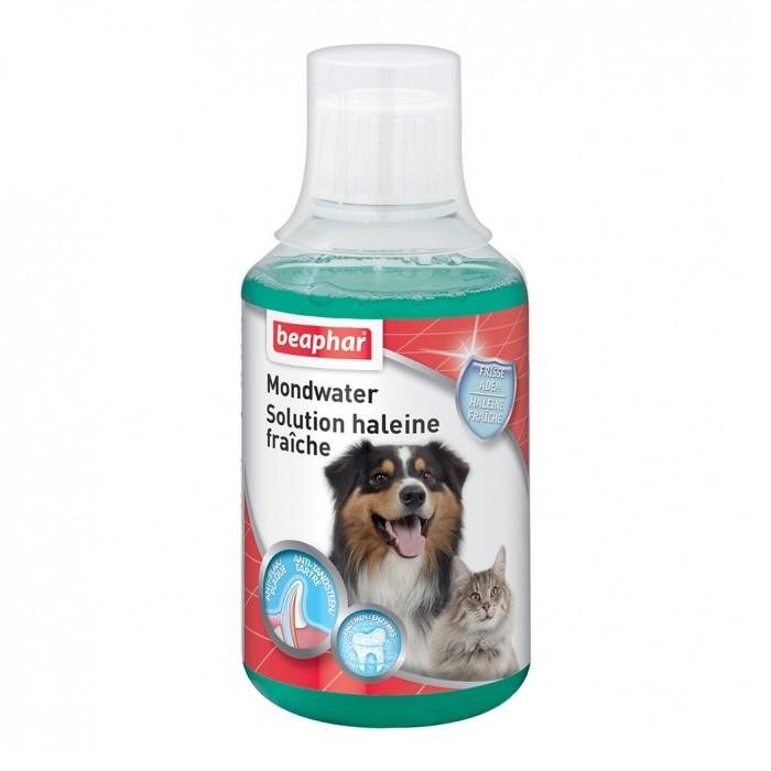 Soin et hygiène du chat - Buccafresh Solution pour chats