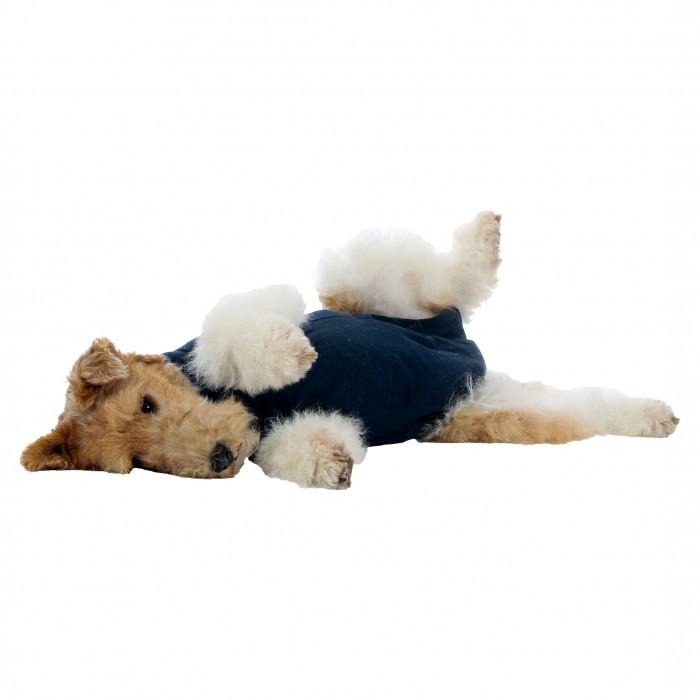 Hygiène dentaire, soin du chien - Gilet de protection pour chiens