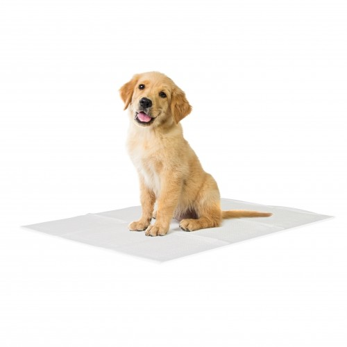 Stress, comportement chien - Tapis éducateur Basic pour chiens