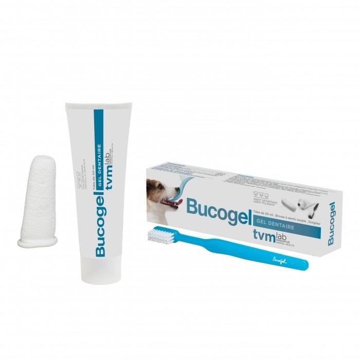Soin et hygiène du chat - Bucogel, pâte dentifrice pour chats