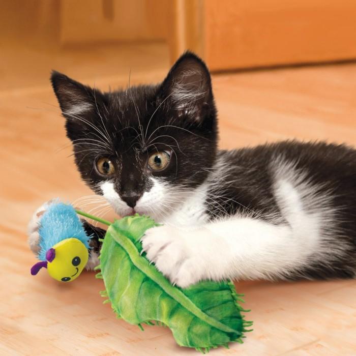 Jouet pour chat - Peluche chenille Flingaroo CATerpillar KONG pour chats