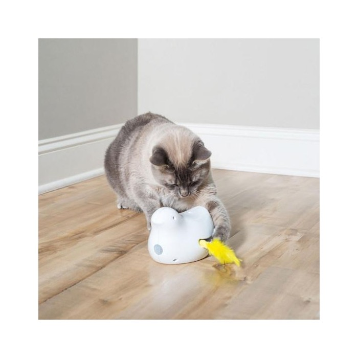 Jouet pour chat - Jouet électronique Peek-A-Bird pour chats